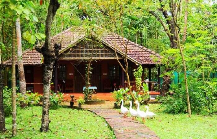 villas in Kerala
