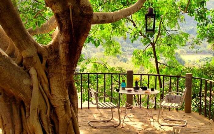 A dining setup in the The Den Corbett Treehouse in Ramnagar