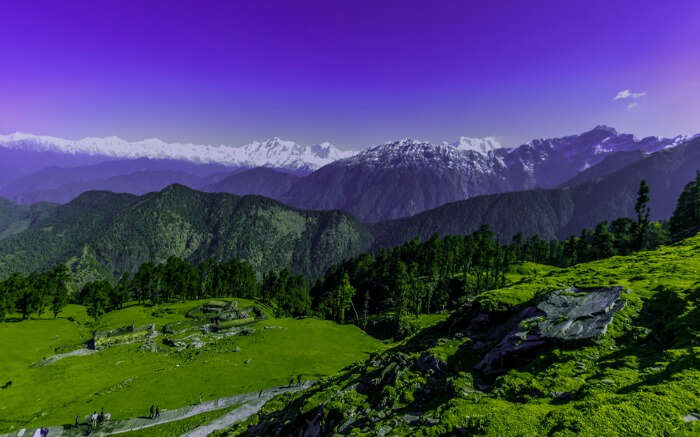 A landscape of Chopta base camp on Chandrashila Trek route