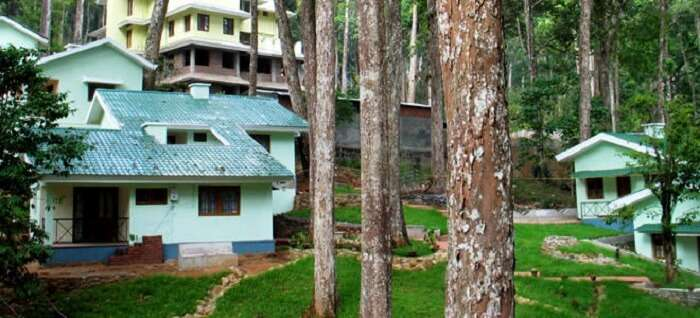 cheap munnar cottages
