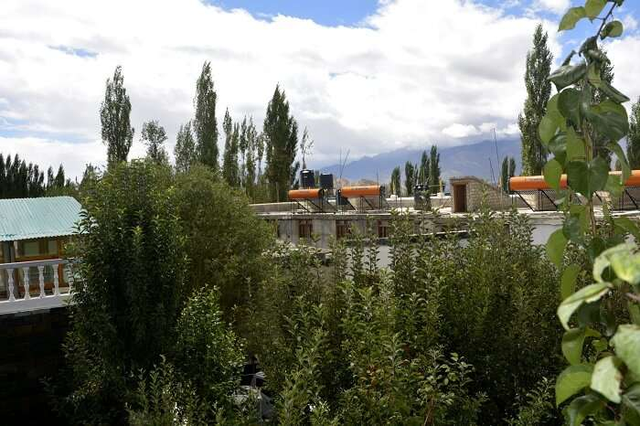 places to stay in leh