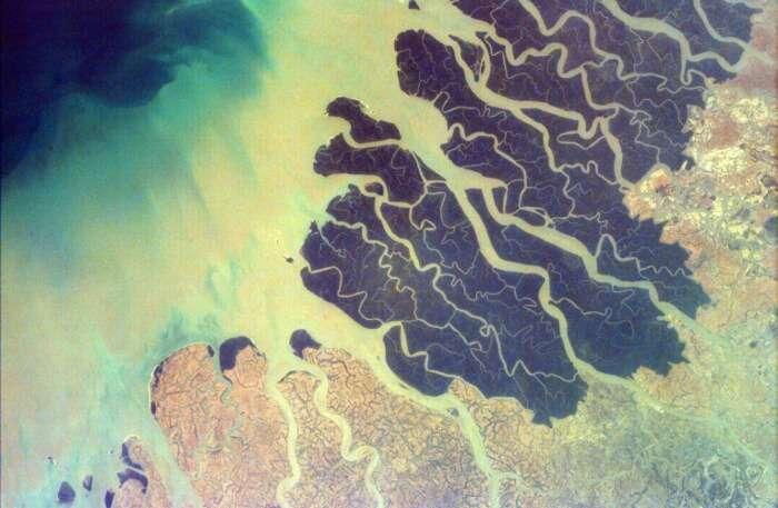 Ganga and Brahmaputra Delta View
