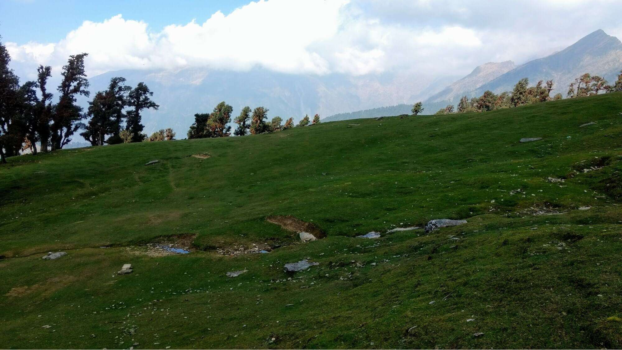 a beautiful green meadow in the mountains