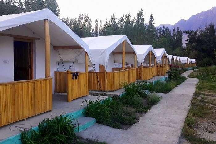 ninad tents in ladakh in nubra