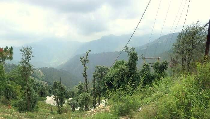 view from camp site in kanatal