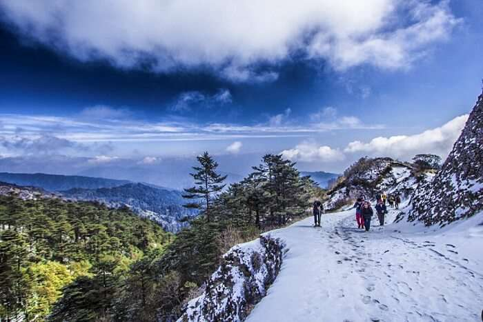 Sandakphu Phalut trekking in Darjeeling