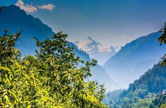 Shimla hills View