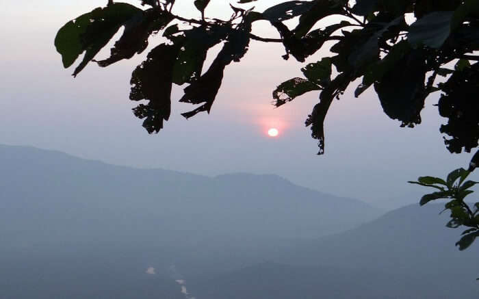 Sunset behind leaves in mountains