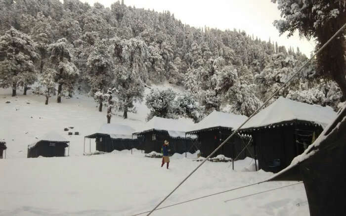 Tents covered in snow in Chopta in Uttarakhand