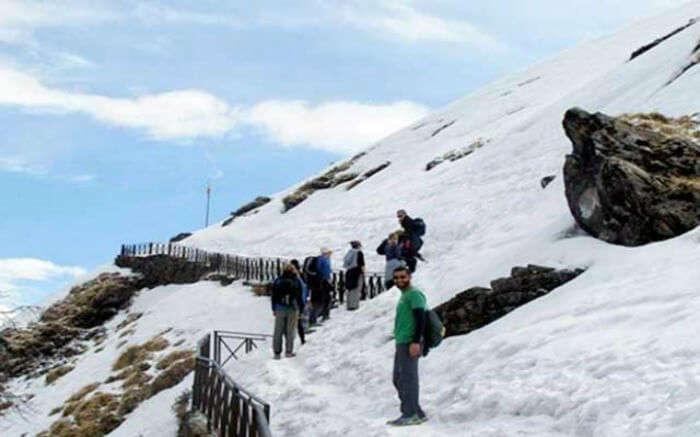 Trekkers on their way to Chandrashila Peak near Chopta in Uttarakhand