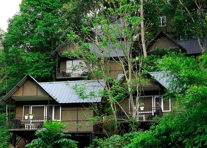 budget cottages in munnar