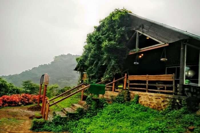 dine lavishly at the trikaya resort near bhimashankar reserve