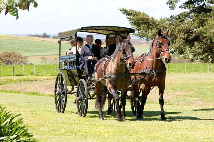 Barossa Carriages in Barossa valley