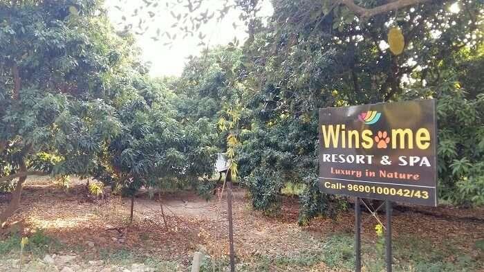 winsome resort