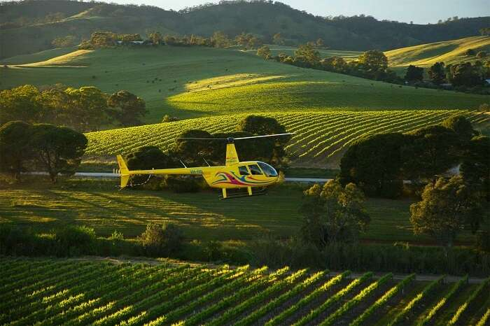 Helicopter ride in Barossa