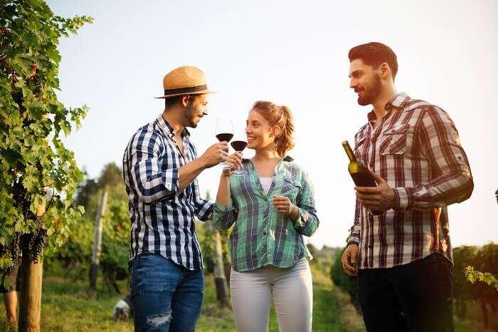 Tips For Visiting Barossa Valley