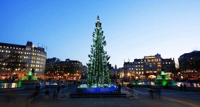 Christmas Tree At Trafalgar Square, London