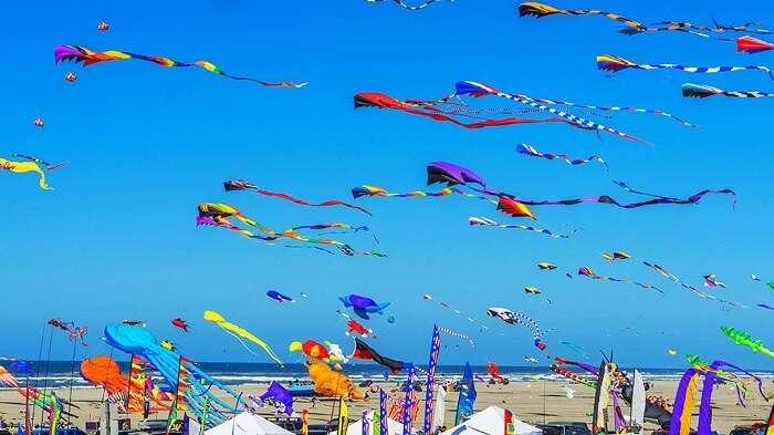 The Washington State International Kite Festival