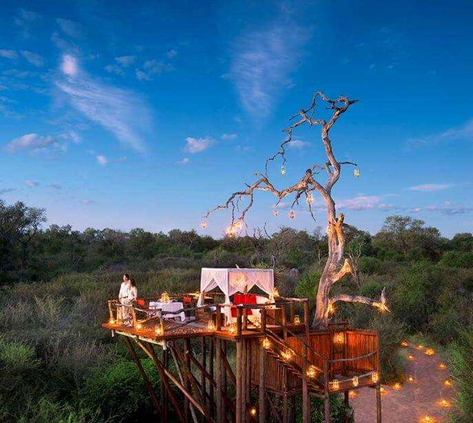 A couple standing atop the Chalkley Treehouse in Lion Sands in Africa