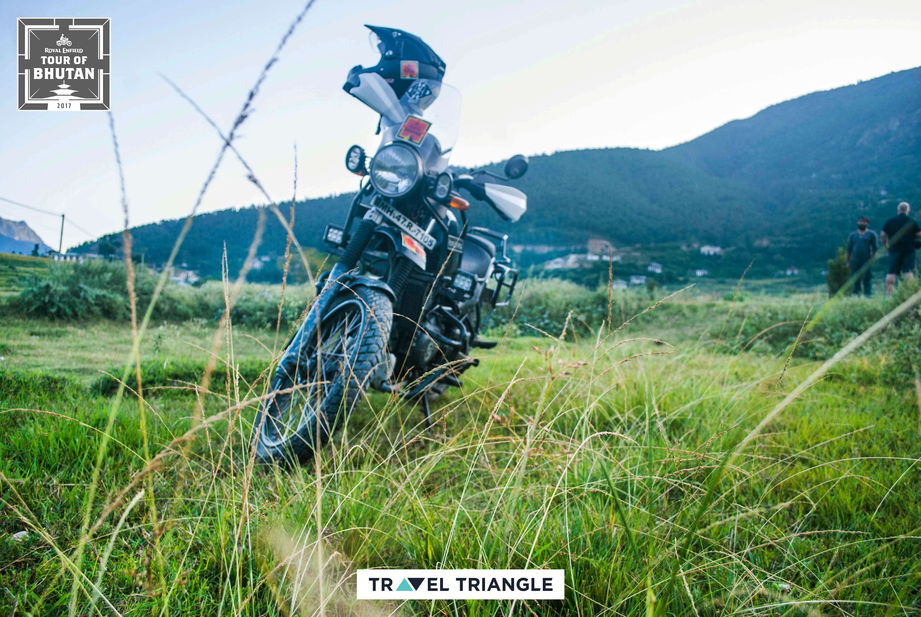 Thimphu to Punakha: the bike standing on a grassy slope