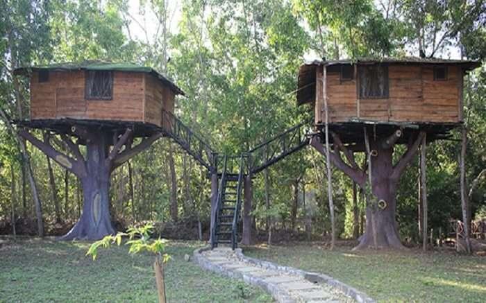 Dandeli Shikra Jungle Resort