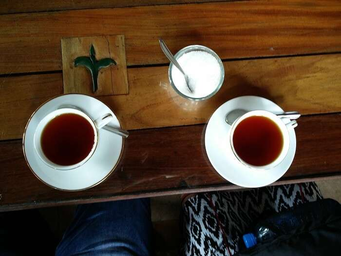 tea in sri lanka