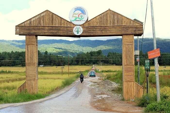 road to ziro