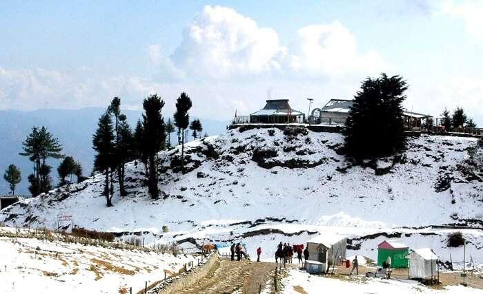 kufri near shimla