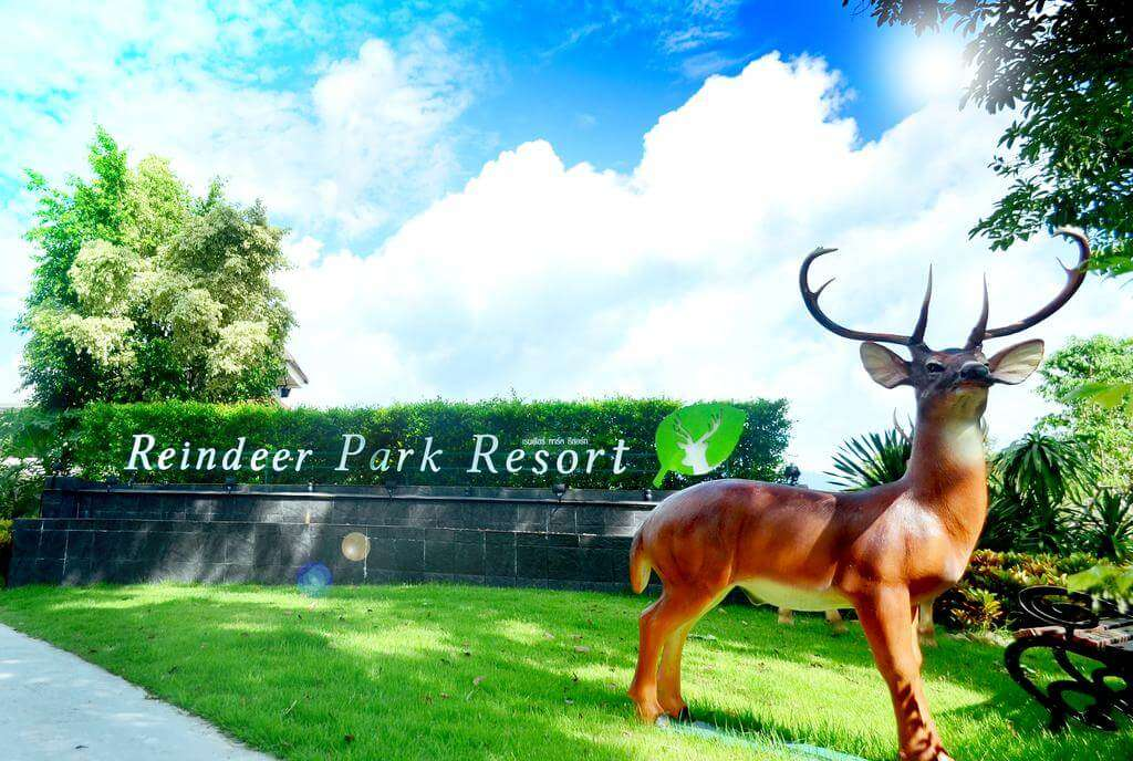 A wooden deer in the lawn of a Kanatal resort