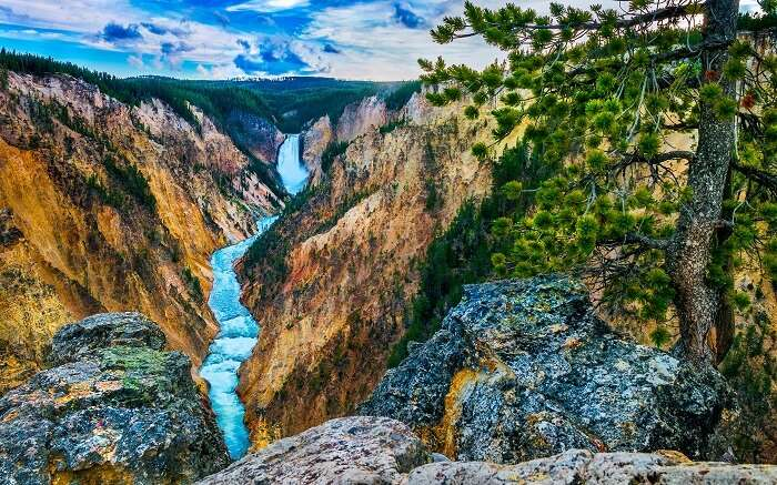 The Grand Canyon in Yellowstone National Park