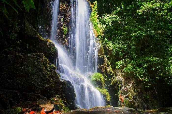 take a dip at Tiger Falls, one of the best things to do in dehradun