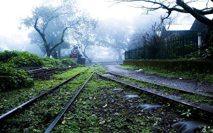 Train track in a foggy jungle