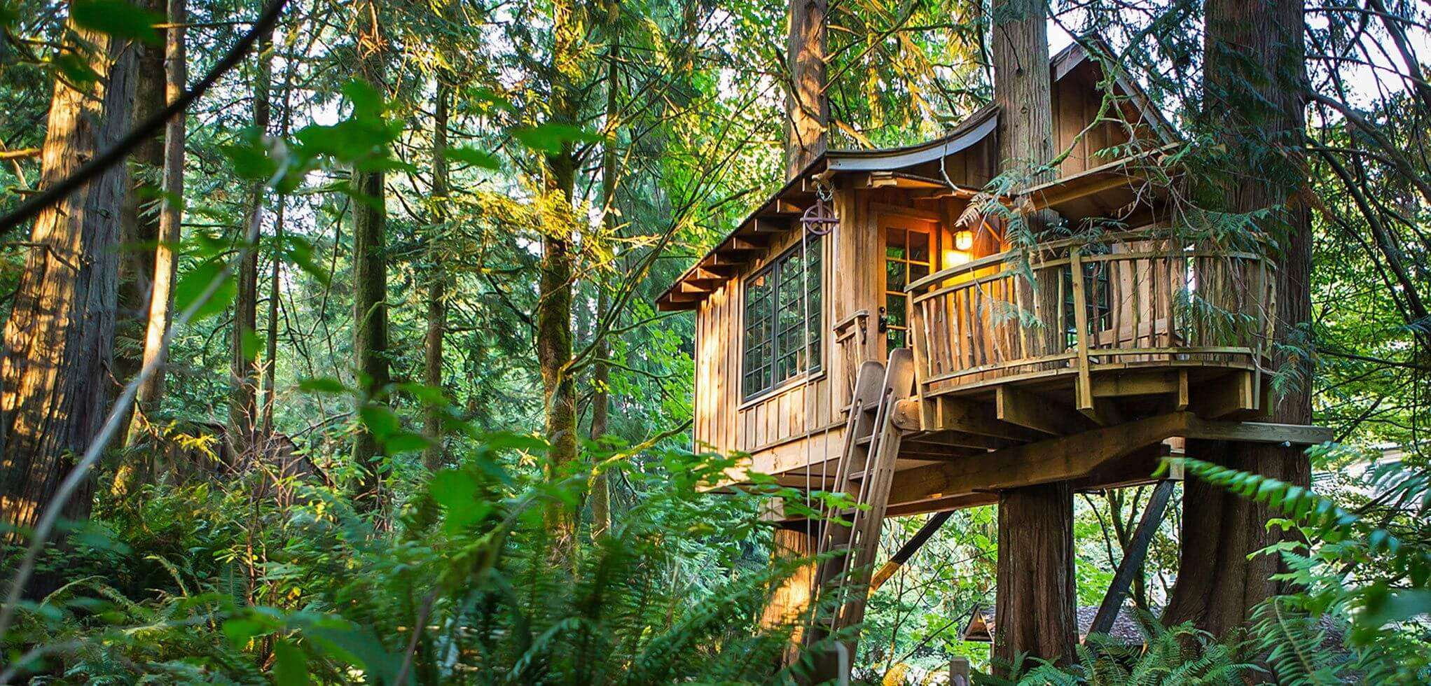A front view of Treehouse Point in Issaquah in Washington