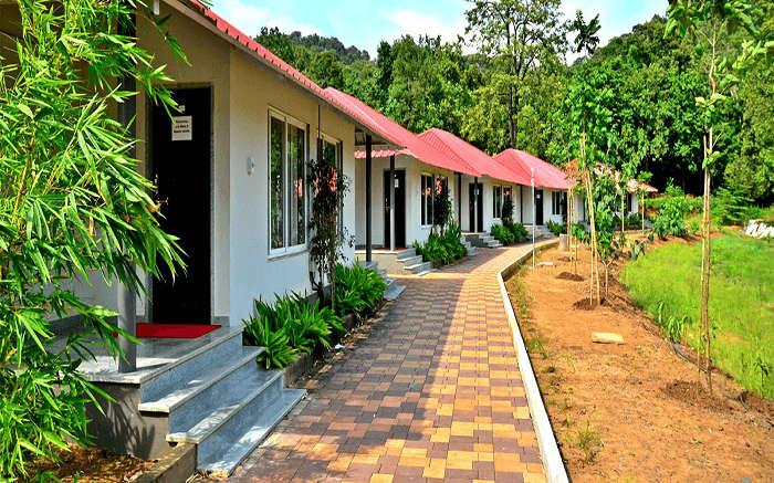 Whistling Woodzs Resort