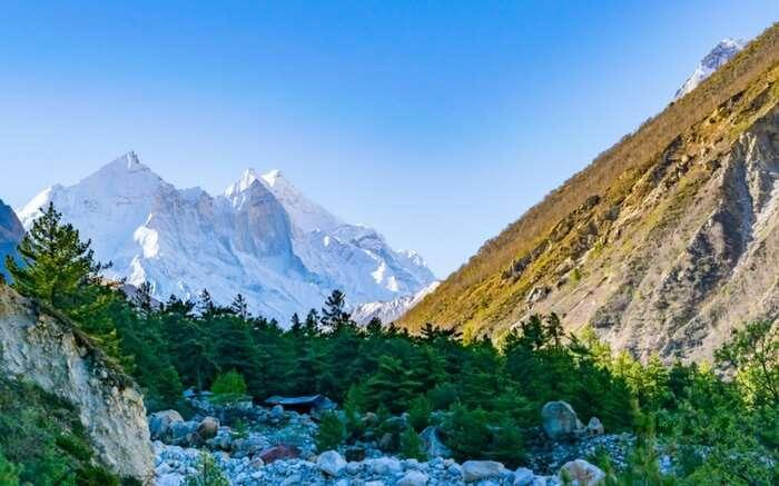 acj-0410-gangotri-glacier-trek-3