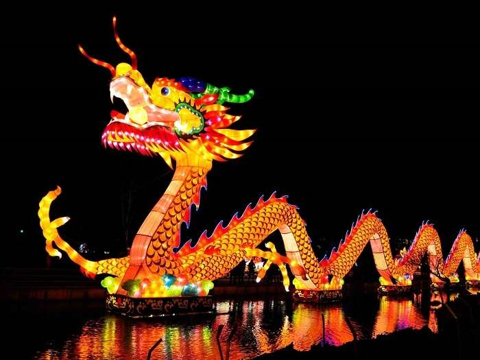 dragon during new year in china