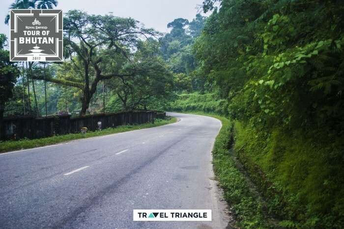 the winding roads of phuentsholing