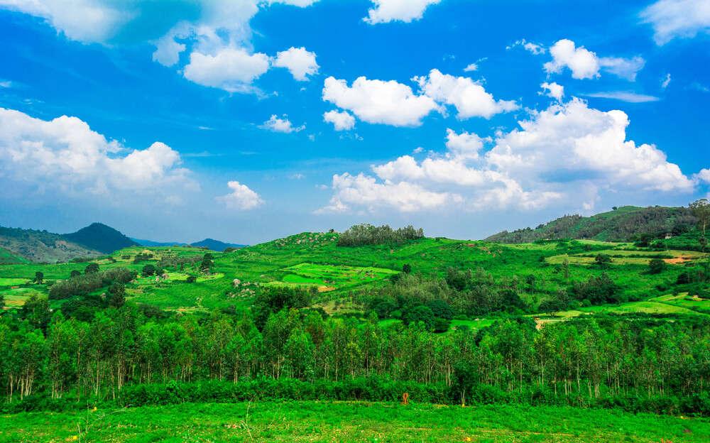 a beautiful green field under clouded sky