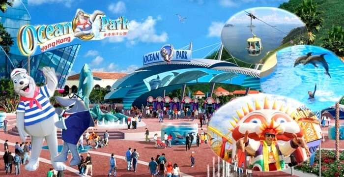 Ocean park hong kong fun