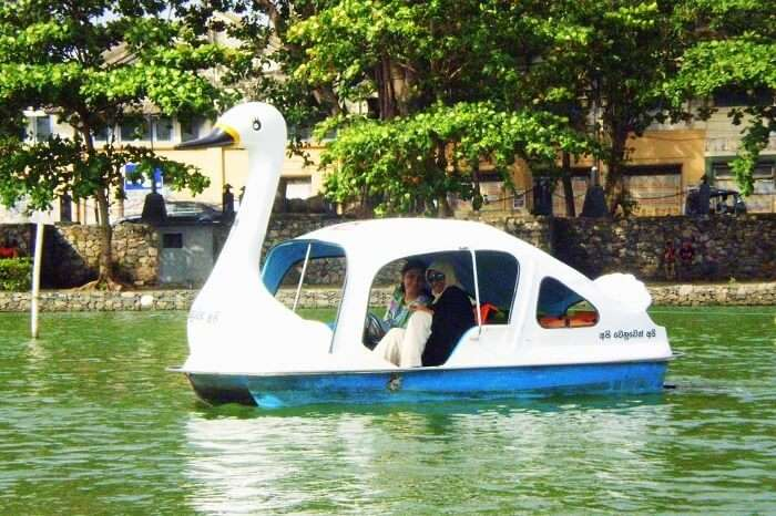 Swanboat ride in Colombo