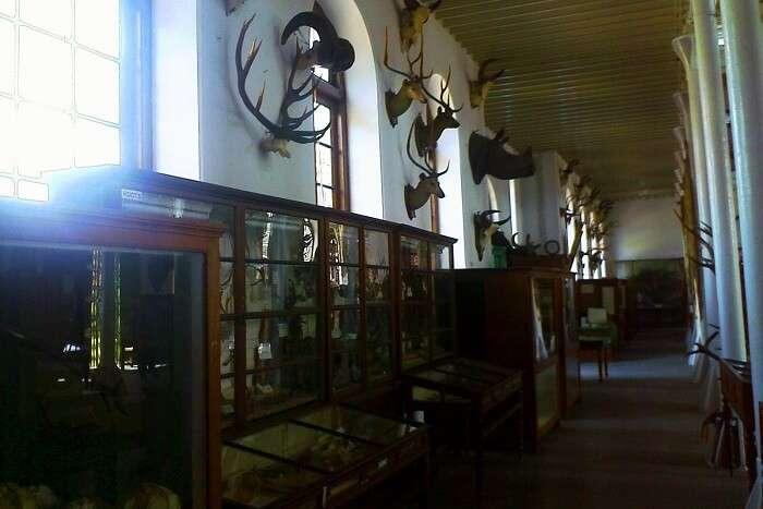 Gass Forest Museum Coimbatore
