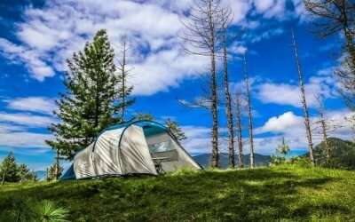 A camp in Narkanda surrounded by nature's greenery