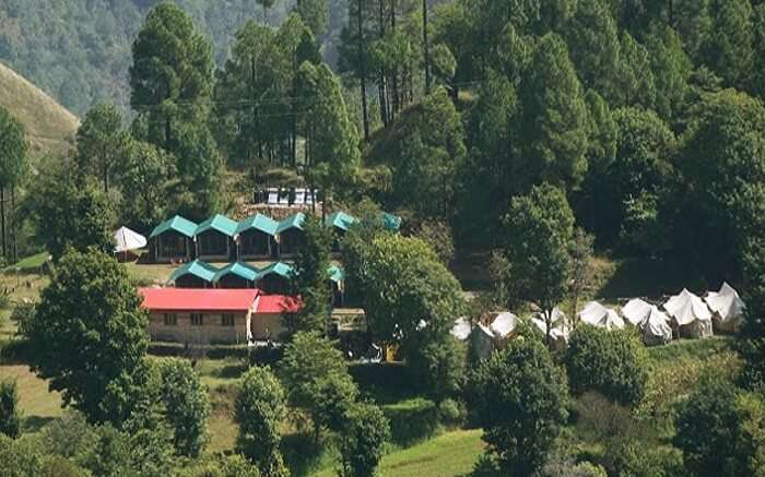 A view of Redwood Camps Shimla tucked in woods