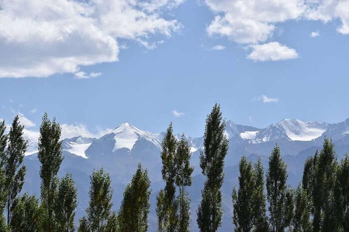 lokpal romantic trip to ladakh: scenic views