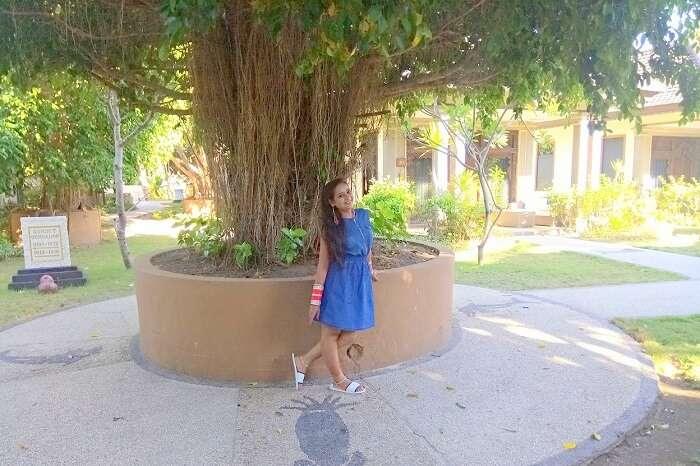 pankaj honeymoon trip to bali: outside park regis tree