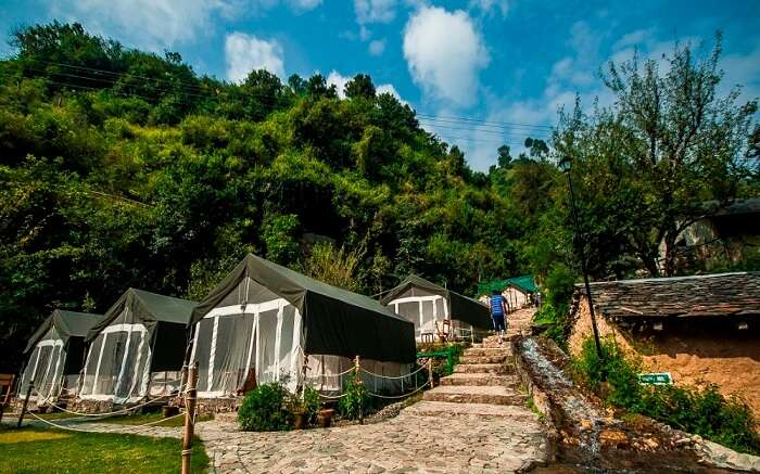 The beautiful camps of Hail Himalayas in Shoghi in Shimla