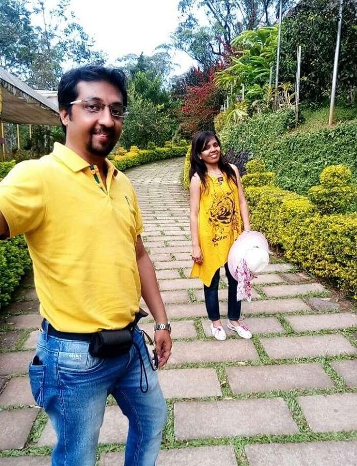 Green gardens in Munnar