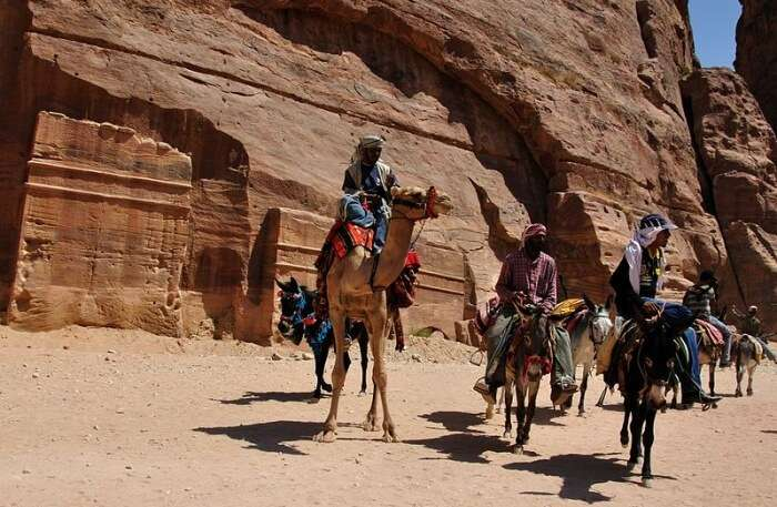 Ride the camels
