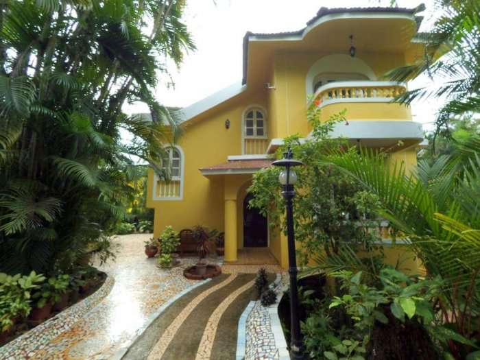 palm grove cottages goa