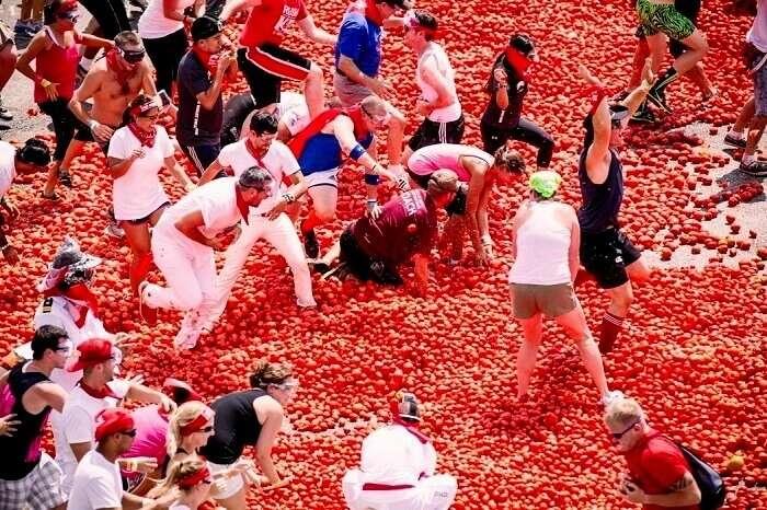 la tomatina bunol